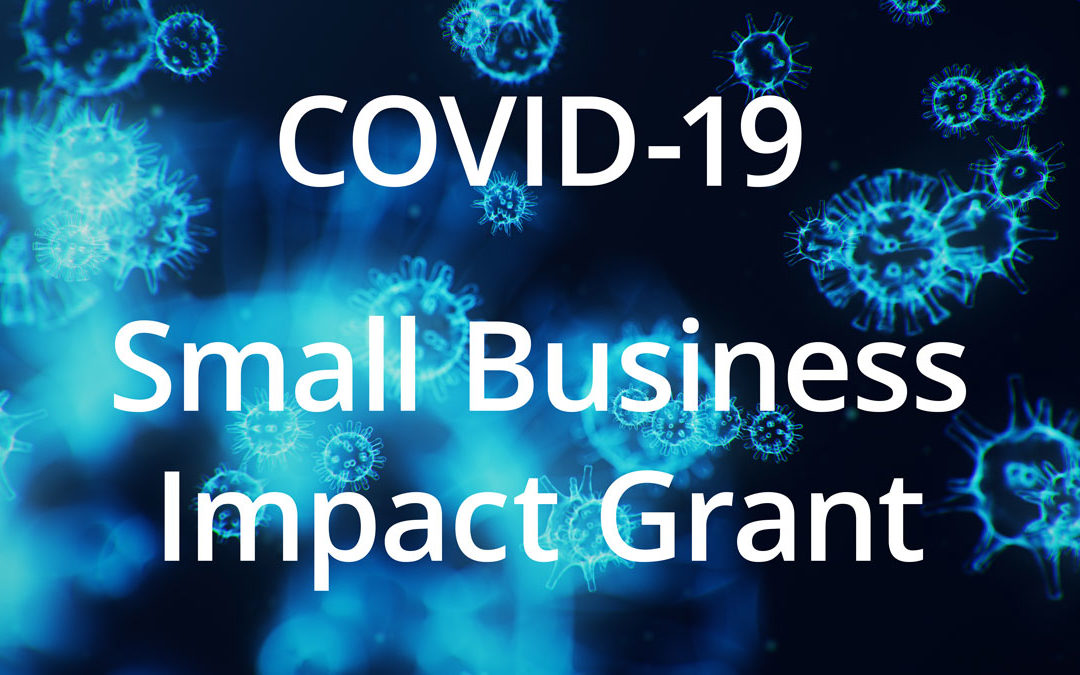 COVID-19 Small Business Impact Grant